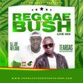 TEARGAS and DJ JOE MFALME-REGGAE IN THE BUSH LIVE MIX 2021.mp3