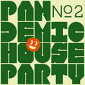 Pandemic House Party № 2