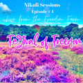 Nikoli - Live at the Freedom Festival - 2020