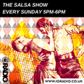 The Salsa Show with DJ Susanita on IO Radio 100121