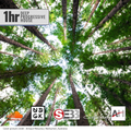 SEBB - Just Chillin (SEBB floating mix) (UDGK: 05/06/2021)