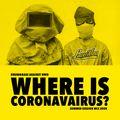 Where is Coronavairus? - Summer Session Mix 2020-LAMAKA