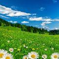 Seasons: Spring (April)