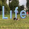 Coakley's Collective // 010 - LIVE @ Life Festival | 26.05.2019