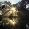 Angel Lights