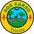 SOS CARSO @ HUMANS Radio Fragola