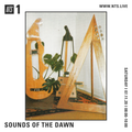Sounds Of The Dawn - 7th November 2020