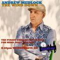 The Wind Down with Andy Medlock - Jose Padilla, Balearic Special