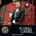 DEEP PLEASURE 07 02 2021 - FLYING CAMEL [UK]
