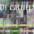 DJ Catnip - Fifteen Minutes of FAST