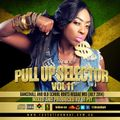 PULL UP SELECTOR VOL 11 DANCEHALL AND ROOTS REGGAE MIX BY DJ PIT
