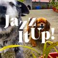 JazzItUp! 21-05-02 ⌇ DJ Erkin Antov ⌇ Island Mixtape