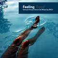 Feeling Good from Soulful to House set by BADJ