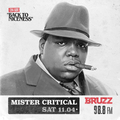 Mister Critical - Back To Niceness (BRUZZ - 11.04.2020)