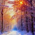 'Burning Snowflakes'