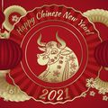 Quang Ta Cai Boong 2021 YUZHE Happy New YEAR COW  MIX
