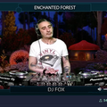 Enchanted Forest 13-6-2021 with dj Fox