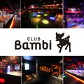 BAMBI Anthem MEGA MIXXX Vol.03