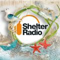 Vagabond Show On Shelter Radio #100 feat Deep Purple, Golden Earring, David Bowie, The Doors
