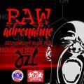 DJ Dzl - RAW Adrenaline Altenative Rock Mix