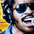 Hudební nauka #18 // Stevie Wonder
