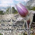 Im Zeichen der Frühlings Anemone (March 2014)