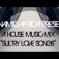 """Dynamic Africa presents: A House Music Mix - """"Sultry Love Songs"""""""