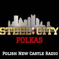 Steel City Polkas - Rob Mazur (2/7/2021)