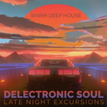 Delectronic Soul - Late Night Excursions - 24 Warm Deep House Cuts
