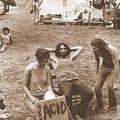 Woodstock Vibes 2