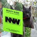 BEAUTY SLEEP 026 w/ Angel Simitchiev & Czaszka Records - September 2, 2020