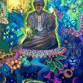 DJ INJIR - MYSTICAL VOYAGERS VISIONARY SHAMANICS SHOW - 1/18
