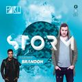 Storm Radio by PaKu - Episode 30 - GUESTMIX by BRANDON