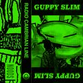 Radio Cambrian Line w/Guppy Slim 9th Jan '20