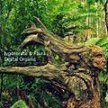 Ivgenerate & Faura - Digital Organic / live dj set on  Luminokaya Art Exhibition [SJM05]