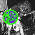 WRR: Wassup Rocker Radio - 07-10-2021 - Radioshow #195 (a Garage & Punk Radioshow from Toledo, Ohio)