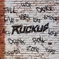 DJ Ruckus - ChillRideLoveVibeDrinkDanceSmokeLive