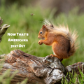 Now That's Americana - 31st October 2019