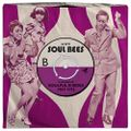 Soul Bees - A Collection of Soulful B-Sides, 1967-1973