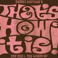 James Lavelle's That's How It Is Def Mix 1: The Warm Up