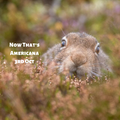Now That's Americana - 3rd October 2019