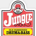 Jungle/Drum N Bass Classics VoL 3