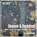 "Radio & Podcast : DJ Nederfolk : Neofolk ""Shadow & Darkness"" mix December 2020"