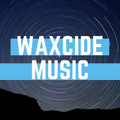 waxcide - museum electro mix