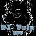 DJ Vulp - Hex Furry Fest Winter 2020