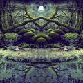 Into The Swamp Of Trolls (Visionary Shamanics Radio Show Mix)