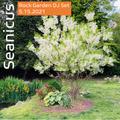 Seanicus DJ Set at the Rock Garden 5.15.2021 part 1