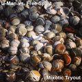 U-Man vs. Free Spirit - Mixotic Tryout (19-02-2007)