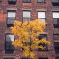 Joris Voorn At Output Brooklyn 23.10.15 Pt.2