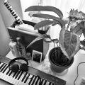 Wax Brase & Wacko Grande - One Hour Phono Mix